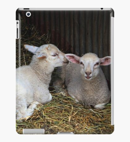 Quite clearly an amusing secret iPad Case/Skin