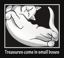 Treasures come in small boxes (2) by Oriana Vanderliek