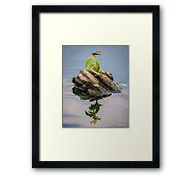 Dragonfly Island Framed Print