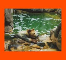 Bear is not Amused Kids Tee