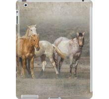 A Band of Horses iPad Case/Skin