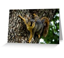 Whatcha Got There? Greeting Card