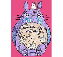 Totoro w/o background  Photographic Print
