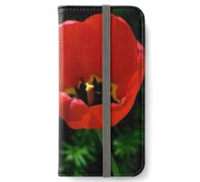 Bright Red Tulip w/greenery iPhone Wallet/Case/Skin