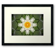 Mandala of Water Lilly Framed Print
