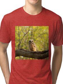 Heir to the throne Tri-blend T-Shirt