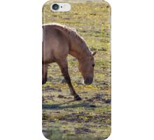 Moves of a Stallion iPhone Case/Skin