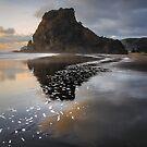 Mirror Ocean  by Jill Fisher