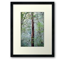 Standing out from the rest Framed Print