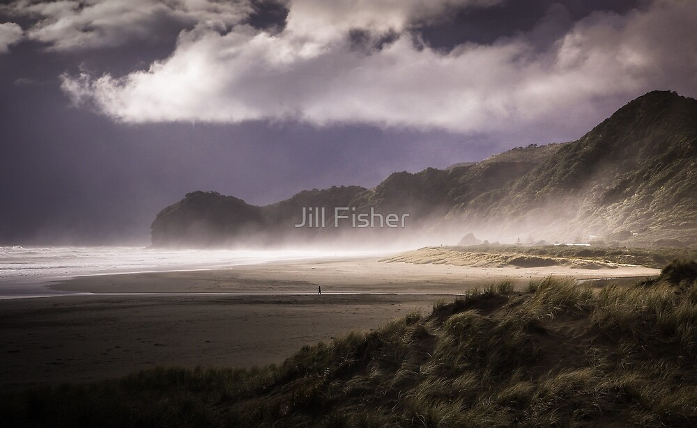 Storm is Coming by Jill Fisher