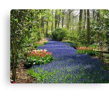 The Flower Lane, 2012, Keukenhof Gardens, Holland Canvas Print
