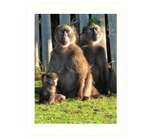 Baboons meditating while baby looks bored Art Print