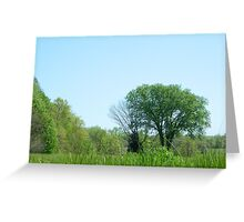 Tree in the fields Greeting Card