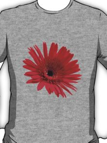 Red flower T-Shirt