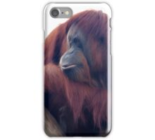 Orangutan - Color Version iPhone Case/Skin