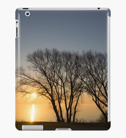 Peaceful Blues and Golds  iPad Case/Skin
