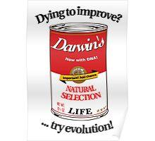 Darwin's Soup Poster