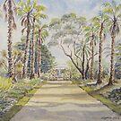 Palm Avenue, Williamstown Botanic Gardens by Virginia  Coghill