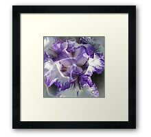 Iris Fragrance Framed Print