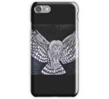 Hunting Owl iPhone Case/Skin