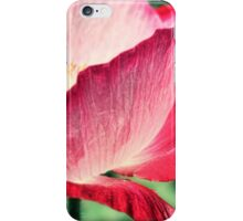 Red Poppy in Sunlight iPhone Case/Skin