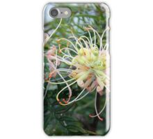 Bouncing in the Breeze iPhone Case/Skin