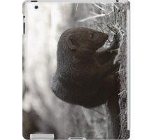 Mongoose iPad Case/Skin