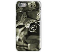 Falling Away iPhone Case/Skin