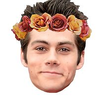 Dylan O'Brian Flower Crown by ZannahP
