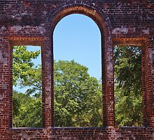 Nature's Window by Paulette1021
