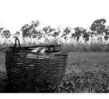 the Picnic Basket Photographic Print