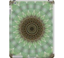 Ipad Abstract cover 3 iPad Case/Skin