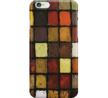 Palette of Spices iPhone Case/Skin