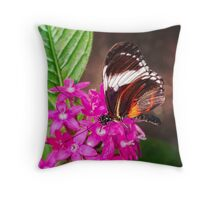 Butterfly on Pink Penta Flowers Throw Pillow