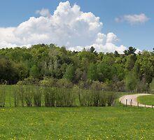 Park Landscape by Josef Pittner