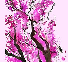 Watercolour Cherry Blossoms by Earlofjosh