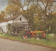 Farm Still Life by Pat Abbott
