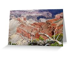 Sedimentary Red Greeting Card