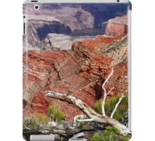 Sedimentary Red iPad Case/Skin