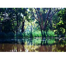 Sunny Day Reflections Photographic Print