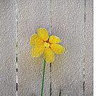 Yellow Daisy Pillow by heatherfriedman