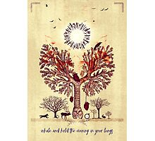 lung trees Photographic Print