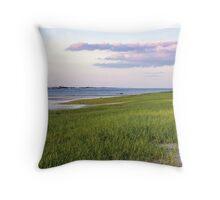 Millway Beach Throw Pillow