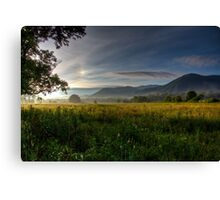 June Morning in Cades Cove HDR Canvas Print