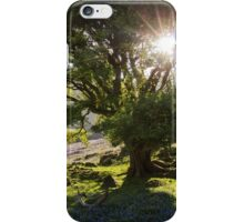 Rannerdale Bluebells iPhone Case/Skin