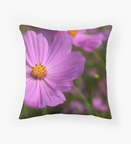Cosmos field 4 Throw Pillow