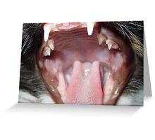 Tiger Lilly yawning Greeting Card