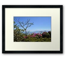 The Sea of Galilee Framed Print