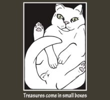Treasures come in small boxes ( inspired by Maru ) by Oriana Vanderliek