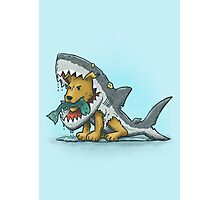 Shark Suit Dog Photographic Print